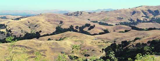 kings-canyon-loop-trail