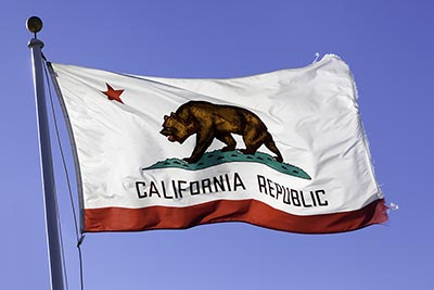 The California state flag